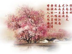《春雨江南》 - 飞沙 - 飞沙(csheen)的博客